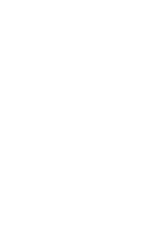 GREEN MEDIA INC.